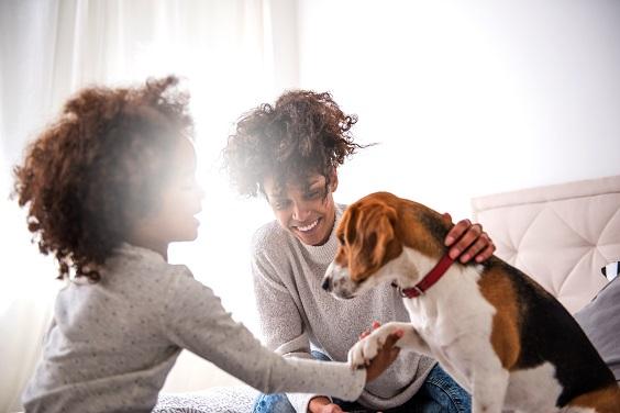 animais de estimação e crianças