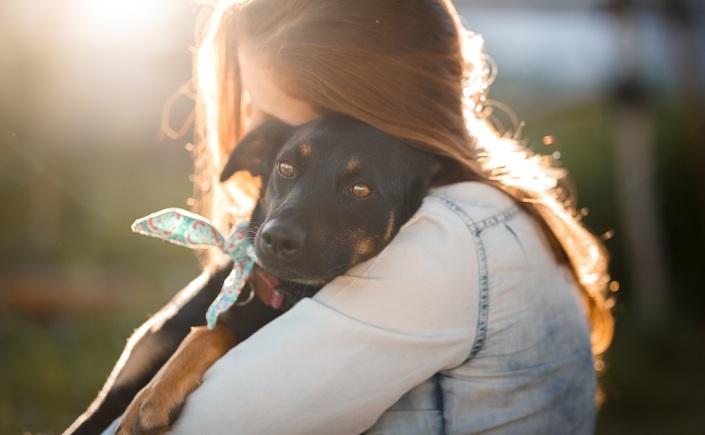 benefícios animais de estimação para a saúde