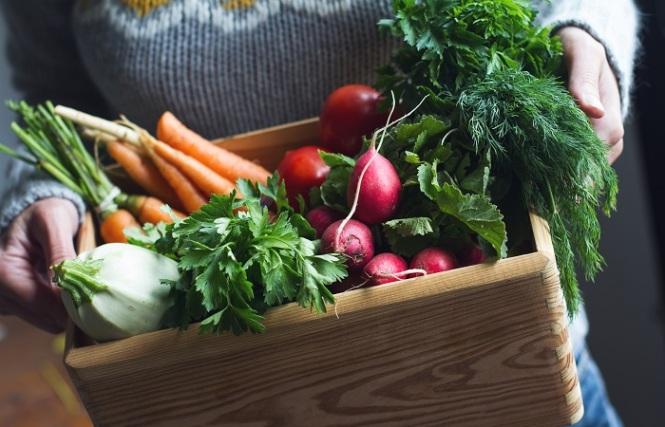 cuidados com a alimentação no inverno